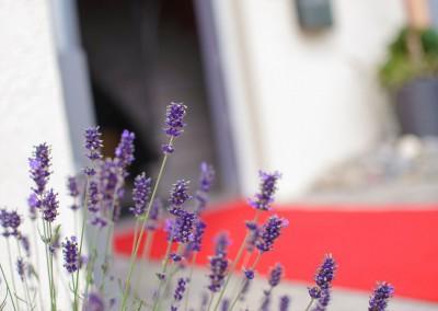 Eingang zum Naturfriseur mit blühendem Lavendel